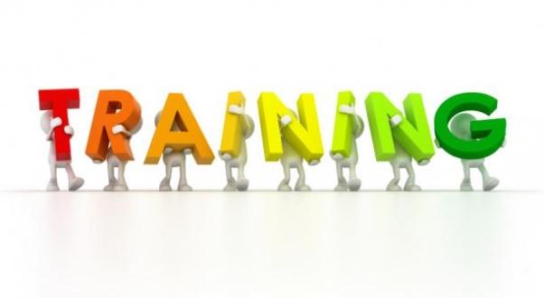 1134 training 2